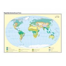 Harta Pamantul. Zonele de vegetatie