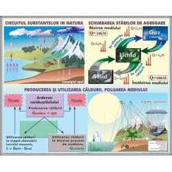 Circulatia substantelor. Poluarea mediului / Lumina masurarea vi