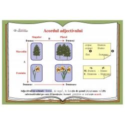 Plansa Acordul adjectivului