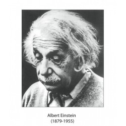 Portrete Fizicieni renumiti