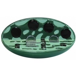 Model cloroplast