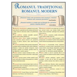 Romanul traditional. Romanul modern
