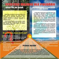 Efectele majore ale poluarii
