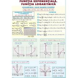 Functia exponentiala. Functia logaritmica/ Integrala definita